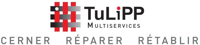 tulipp-cerner-reparer-retablir